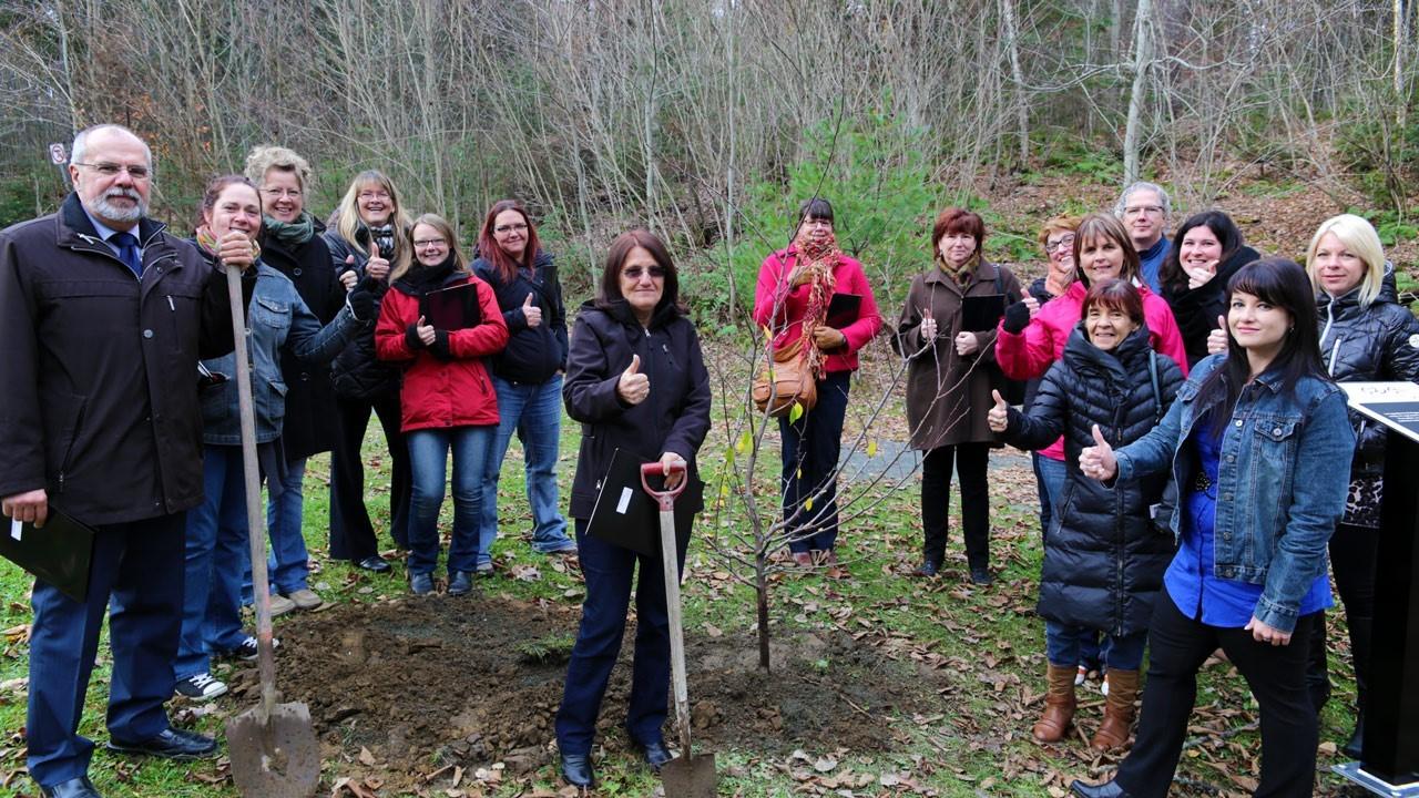 Plantation d un prunier en l honneur des organismes qui for Portent fruit