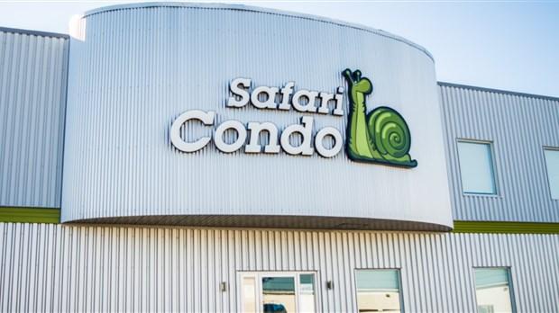 safari condo   les employ u00e9s et la satisfaction des clients